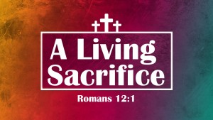 Living Sacrifice 16.9