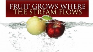 Fruit Grows Where the Stream Flows (title)